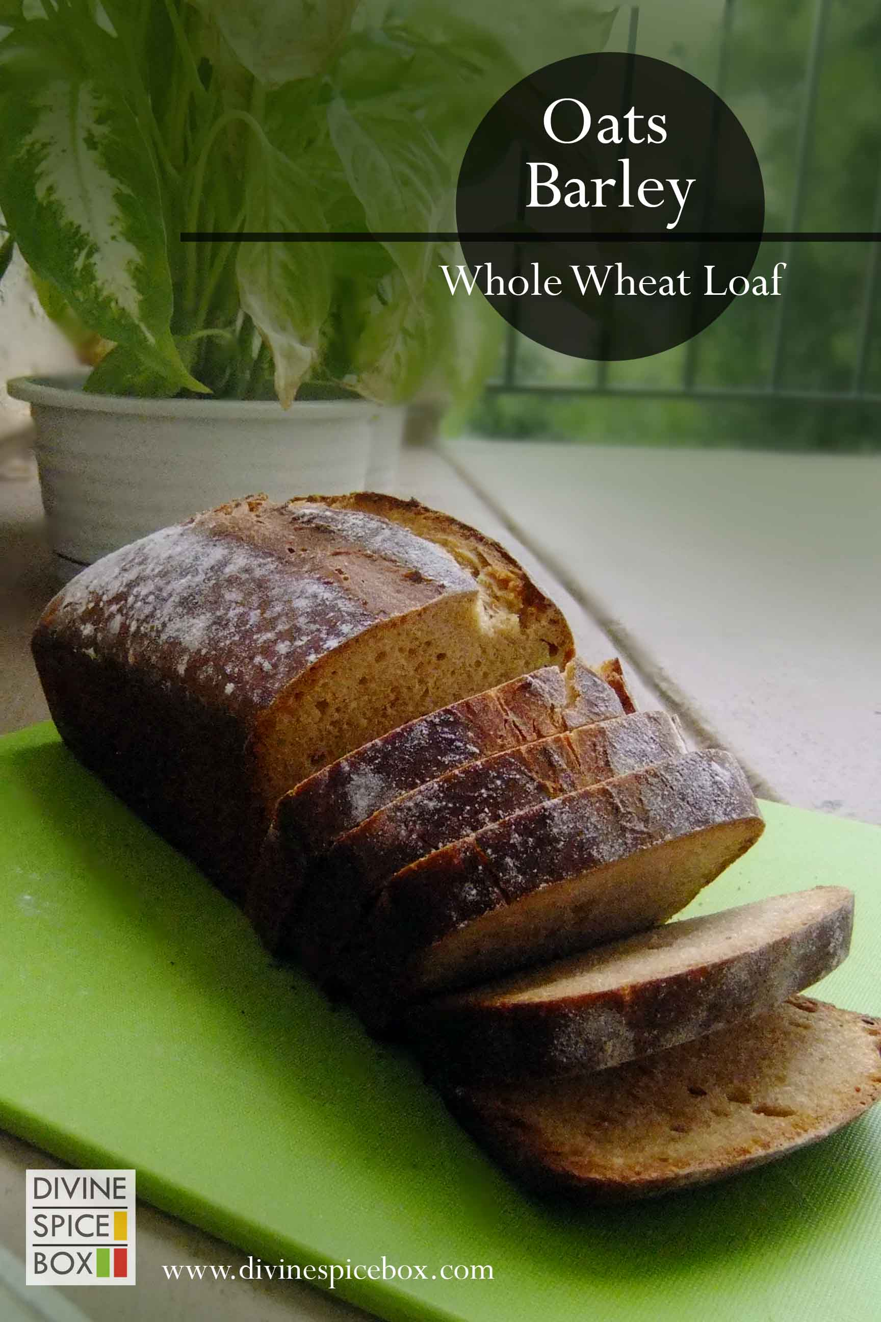 oats barley whole wheat loaf copy